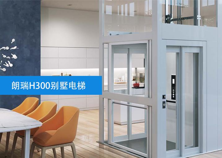 泰安朗瑞H300别墅电梯